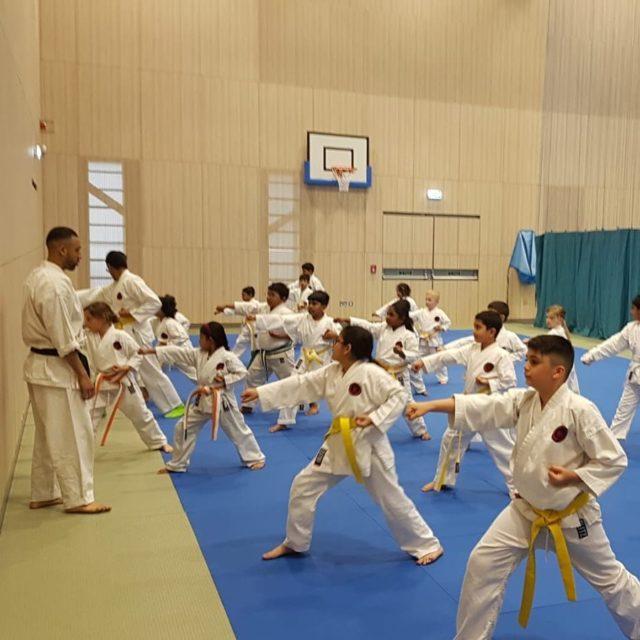 Longford Store UK Cintur/ón de karate artes marciales Taekwondo Judo Kickboxing Ju-Jitsu Shotokan Junior//Senior tama/ño
